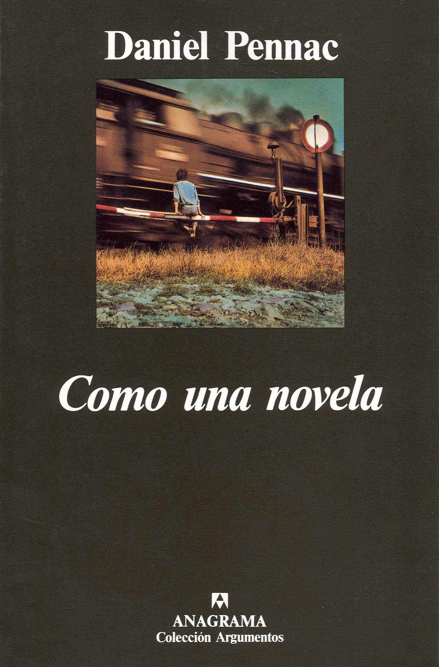 Como una novela - Daniel Pennac